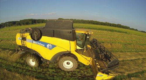 New Holland CX 840 aan het graszaad dorsen in Wijchen nabij nijmegen.. Geplaatst door johnnyboy op 17-07-2014 om 12:16:41, op TractorFan.nl - de nummer 1 tractor foto website.