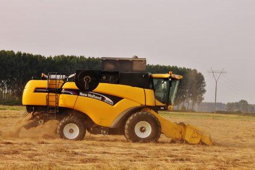 Foto van een New Holland CX 840, bezig met maaidorsen.. Geplaatst door NHtvt135 op 14-08-2014 om 13:39:50, op TractorFan.nl - de nummer 1 tractor foto website.
