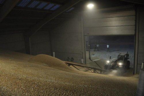 Foto van een New Holland LM 410, bezig met graan opsteken . Tarwe oogst 2014. Geplaatst door KevVer op 17-08-2014 om 19:29:34, op TractorFan.nl - de nummer 1 tractor foto website.