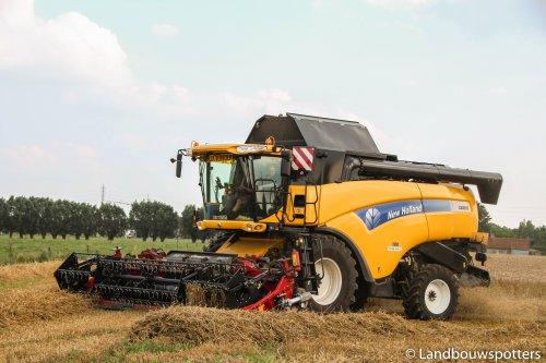 Foto van een New Holland CX 8050, bezig met maaidorsen. Vande Vyvere - Meulebeke. Geplaatst door tractorfreek op 29-08-2014 om 21:32:54, op TractorFan.nl - de nummer 1 tractor foto website.