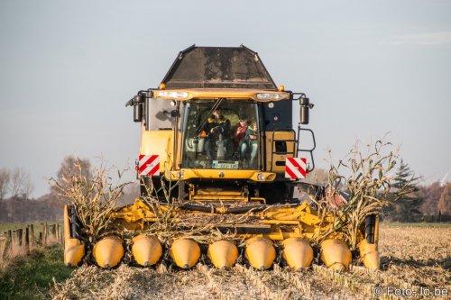 Foto van een New Holland CR 8080, bezig met maaidorsen. Tijdens de demo in Hoogstraten (B) enkele weken geleden.  Meer foto's op [url=http://www.foto-jo.be/foto.html]Foto-Jo[/url] of op [url=https://www.facebook.com/fotojdl]FB[/url]