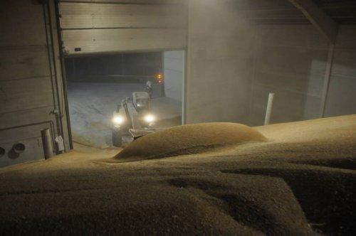 Foto van een New Holland LM 410, bezig met graan opsteken.Oogst 2014. Geplaatst door KevVer op 27-01-2015 om 08:05:23, op TractorFan.nl - de nummer 1 tractor foto website.