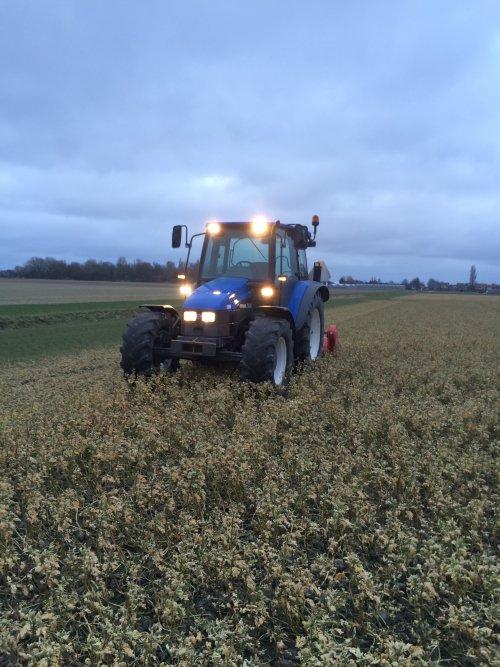 Foto van een New Holland TL 90, vanmiddag wezen stoeien met de groenbemester.. Geplaatst door mennojohndeere op 21-03-2015 om 21:28:28, op TractorFan.nl - de nummer 1 tractor foto website.