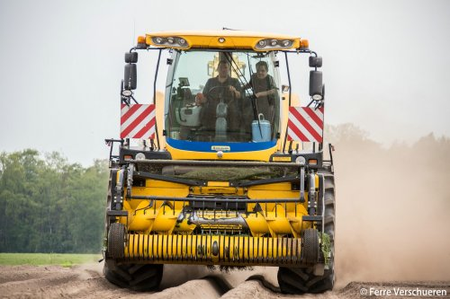 Loonbedrijf Verhoeven met hun New Holland FR 9050 door de aardappelen om bij het perceel te geraken. (2015)