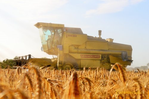 Foto van een New Holland 8080, bezig met maaidorsen.. Geplaatst door Jan Ramon op 09-07-2015 om 21:43:41, op TractorFan.nl - de nummer 1 tractor foto website.