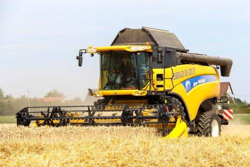 New Holland CX 8050 volop aan het dorsen dezer dagen. Loonbedrijf H.Lissens & Zoon. 2015. Geplaatst door cat 330d op 02-08-2015 om 22:05:24, op TractorFan.nl - de nummer 1 tractor foto website.