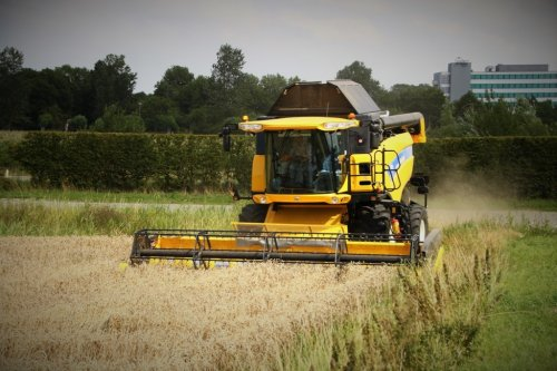 New Holland CX 8060 van alfredo