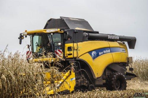 Varkenshouderij Beulink aan het mais dorsen met hun CX8050 op rups.  Nu meer op: http://www.jtnfotografie.nl