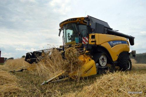 New Holland CX 7.90 van loonbedrijf Pynaert rogge aan het dorsen.. Geplaatst door KennyT op 07-08-2016 om 16:09:00, op TractorFan.nl - de nummer 1 tractor foto website.