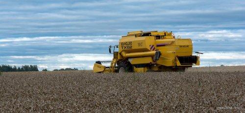 SPRL Tasiaux met New Holland TX 62. Geplaatst door farmer 2 op 11-08-2016 om 16:55:55, op TractorFan.nl - de nummer 1 tractor foto website.