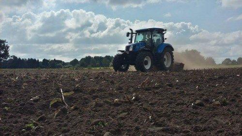 De eerste mais is al af en het gras de dag erna al gezaaid. Geplaatst door bisje7050 op 17-09-2016 om 21:05:13, op TractorFan.nl - de nummer 1 tractor foto website.