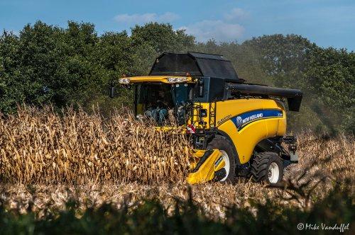 Op verschillende bedrijven is de combine ook alweer eventjes buiten geweest! Het is gewoon een vreemd jaar om het simpel te zeggen ...  New Holland CX 7090 Loonbedrijf De Bollissen - Peer (B)