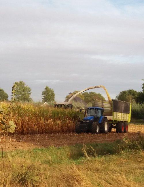 Foto van een New Holland TM. Geplaatst door jordi 1455 op 09-10-2016 om 01:25:23, op TractorFan.nl - de nummer 1 tractor foto website.