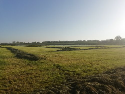 Hoe het veld erbij ligt om 6.30u 's ochtends.. Geplaatst door Jochem Westerhof op 23-04-2019 om 21:24:41, met 13 reacties.