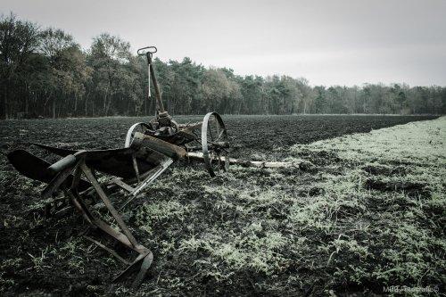 Foto van een Onbekend Ploeg, deze ploeg word tot de dag van vandaag nog gebruikt. Paard ervoor en ploegen maar!!