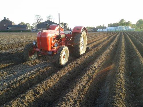 Porsche Master 418, bezig met aardappels aanaarden.. Geplaatst door DannyH op 15-04-2014 om 21:35:50, op TractorFan.nl - de nummer 1 tractor foto website.