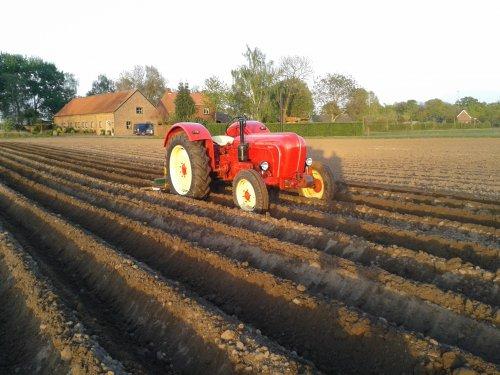 Porsche Master 418, bezig met aardappels aanaarden.. Geplaatst door DannyH op 15-04-2014 om 21:41:48, op TractorFan.nl - de nummer 1 tractor foto website.