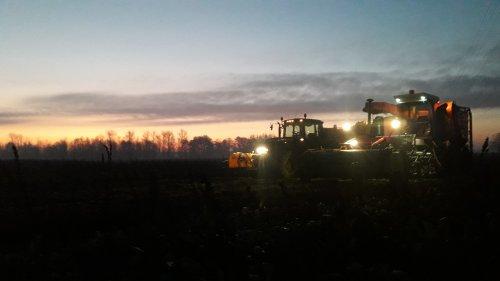 Foto van een Riecam RBM 230 aan het voederbieten rooien in de ochtendgloren. Geplaatst door jd 6620 op 08-12-2019 om 12:18:00, op TractorFan.nl - de nummer 1 tractor foto website.