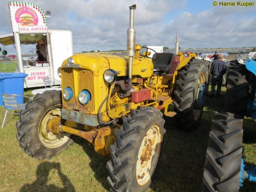 Foto van een Roadless Super Major , Great Dorset steam fair 2019. Geplaatst door oldtimergek op 11-09-2019 om 09:38:59, op TractorFan.nl - de nummer 1 tractor foto website.