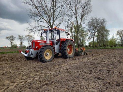 Kleintjen, bezig met relaxen voor de maisplanter.. Geplaatst door Schluterfan op 07-05-2021 om 17:47:32, met 27 reacties.