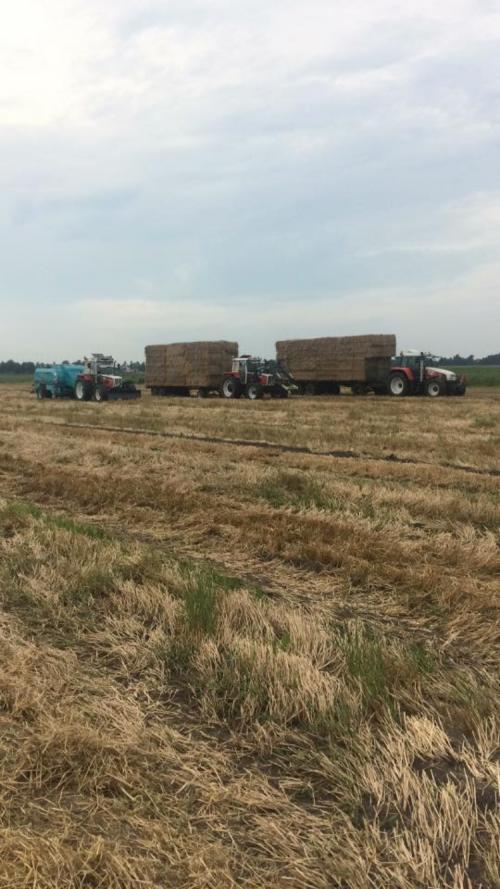 Foto van een Steyr Meerdere van Lucas Hatzmann Agrarischedienst Verlening (Beilen) ×. Steyr 8130 Super -     Steyr 8110 & een Steyr 9115