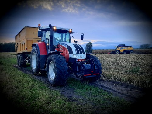 Foto van een Steyr CVT 6195 met joskin gronddumper met opzetschotten voor de mais.. Geplaatst door stijn-de-bock op 06-10-2020 om 07:40:51, op TractorFan.nl - de nummer 1 tractor foto website.