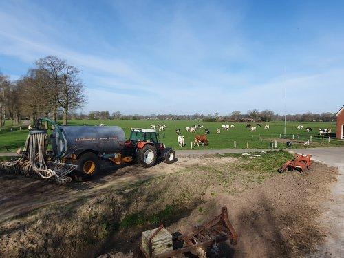 Foto van een Steyr 9094 met op de achtergrond de koeien. Geplaatst door Baltus_steyr op 24-04-2021 om 09:20:14, met 6 reacties.