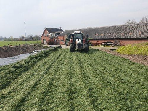Foto van een Steyr 9094 bezig met gras inkuilen. De eerste 12 bunder 1e snede er bijna in zitten 👌👌