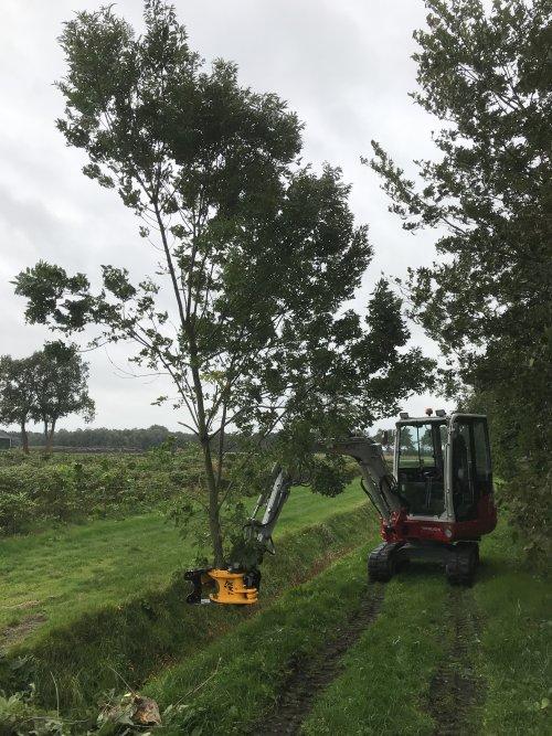 Foto van een Takeuchi TB 230 met Tree Shear bomenknipper.. Geplaatst door Fast Eddy op 13-10-2019 om 08:38:26, op TractorFan.nl - de nummer 1 tractor foto website.