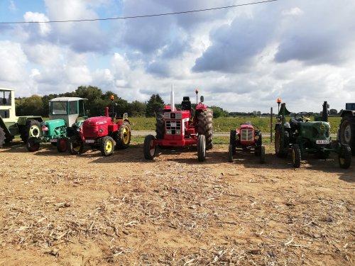 Foto van een Tractors Diverse tijdens de statische show van de oldtimerrondrit bij millon.   De start met al de tractoren kan je hier vinden https://youtu.be/3V9N4u5ljm8
