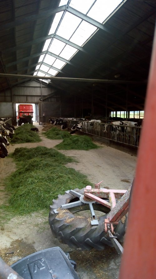 Stalvoeren met de valtra 6400 en gras aanschuiven met de valmet 805. Geplaatst door appievaltra op 28-07-2018 om 20:00:03, op TractorFan.nl - de nummer 1 tractor foto website.