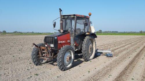 Foto van een Valmet 455 aan het culteren tussen de aardappelruggen. Op deze manier hopen we dan de grond sneller opdroogt om eerder de ruggen aan te kunnen frezen.