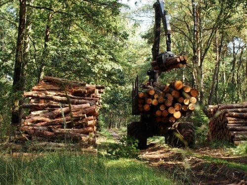 Valmet 840.4 van Boeve Hop Uddel. Geplaatst door janrus op 03-12-2012 om 21:05:24, met 7 reacties.