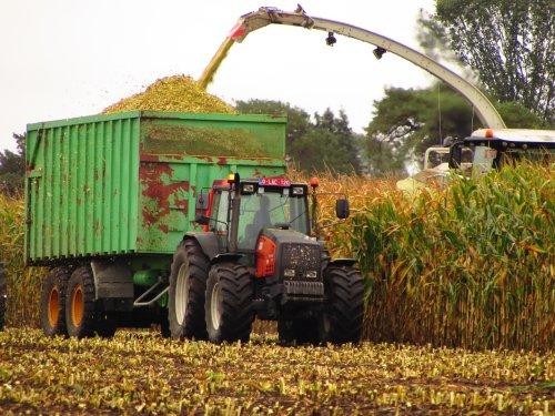 Foto van een Valtra Valmet 8550. Geplaatst door fend1984 op 01-10-2019 om 21:11:33, op TractorFan.nl - de nummer 1 tractor foto website.