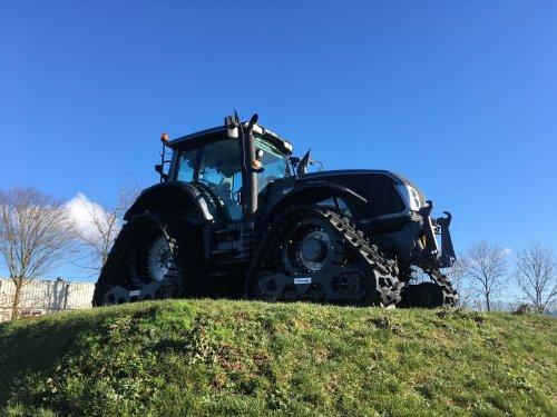 Valtra T213 op Soucy-tracks bij Bemu Marknesse. Geplaatst door ertlerik op 04-02-2019 om 07:23:01, op TractorFan.nl - de nummer 1 tractor foto website.