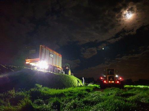 Nachtwerk voor onze haksel ploegen. Hollen of stilstaan nu.... Geplaatst door JD 6110 op 22-05-2021 om 12:38:39, met 4 reacties.