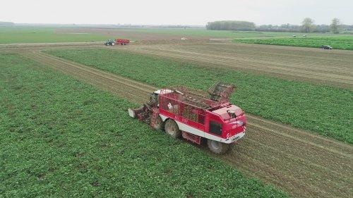 Vervaet Beet Eater 625 van der Woerd Zoelen Filmpje https://youtu.be/QC11n4vbObI. Geplaatst door johnnyboy op 11-02-2019 om 18:16:14, op TractorFan.nl - de nummer 1 tractor foto website.