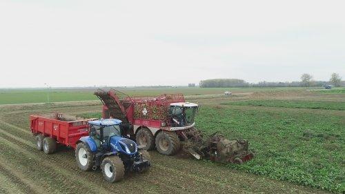 Vervaet Beet Eater 625 van der Woerd Zoelen filmpje https://youtu.be/QC11n4vbObI. Geplaatst door johnnyboy op 11-02-2019 om 18:16:20, op TractorFan.nl - de nummer 1 tractor foto website.