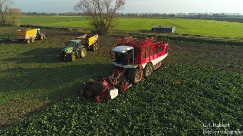 De Vervaet Beet Eater 625 van Loonbedrijf de bruin.. Geplaatst door gypCaseXL op 22-11-2019 om 20:20:02, op TractorFan.nl - de nummer 1 tractor foto website.