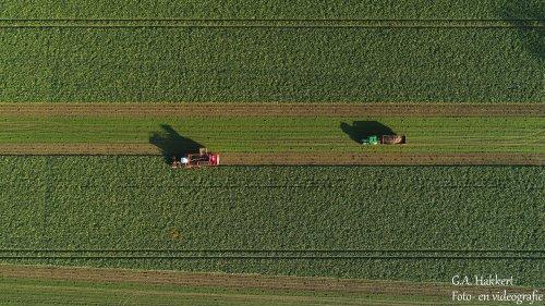 De Vervaet Beet Eater 625 van Loonbedrijf de bruin.. Geplaatst door gypCaseXL op 22-11-2019 om 20:20:05, op TractorFan.nl - de nummer 1 tractor foto website.