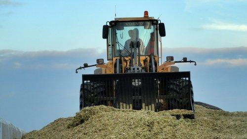 Foto van een Volvo L110E, bezig met maïs inkuilen. loonbedrijf Aernouts Tax. Geplaatst door kevinmertens op 11-11-2013 om 20:13:17, op TractorFan.nl - de nummer 1 tractor foto website.