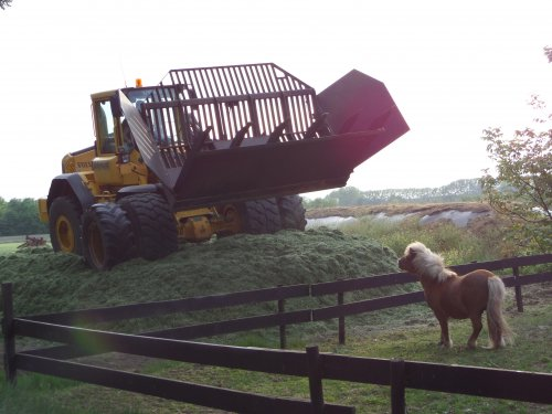 Loonbedrijf Bosmans Hilvarenbeek afgelopen maandag 5 mei bij ons de kuil aan het bijrijden met een Volvo L90E met zelfbouw bak tijdens het gras inkuilen van de 1e snee van 2014.  Tja... Ik zou ook opkijken als er zo'n grote machine in een keer voor me staat! :D   (Het weitje op de voorgrond+mini pony is van de buren).
