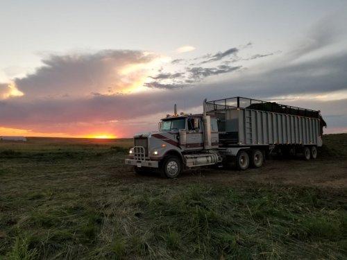 vrachtwagen Western Star van catfan55