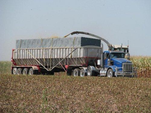 vrachtwagen Kenworth van SD dairymen