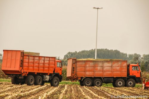 vrachtwagen M.A.N. Wallpaper