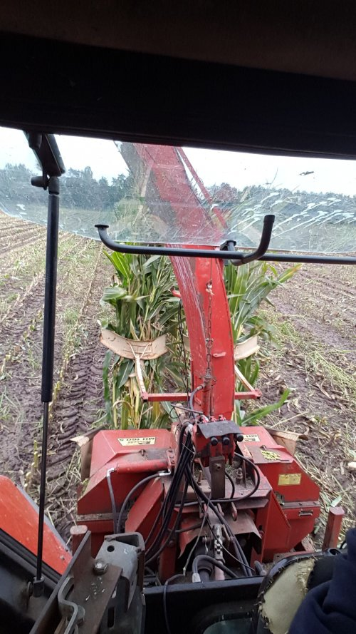 Foto van een Zetor Forterra 8641  foto van afgelopen jaar. Geplaatst door rickzetor4ever op 01-03-2020 om 13:13:29, op TractorFan.nl - de nummer 1 tractor foto website.
