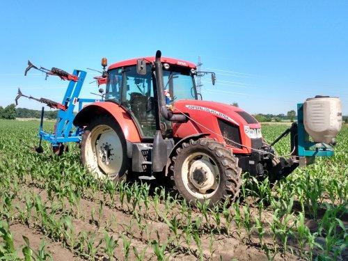 Foto van een Zetor Forterra 120 HSX bezig met mais onderzaaien😋. Geplaatst door zetordrivertimo op 25-06-2020 om 11:18:29, met 3 reacties.