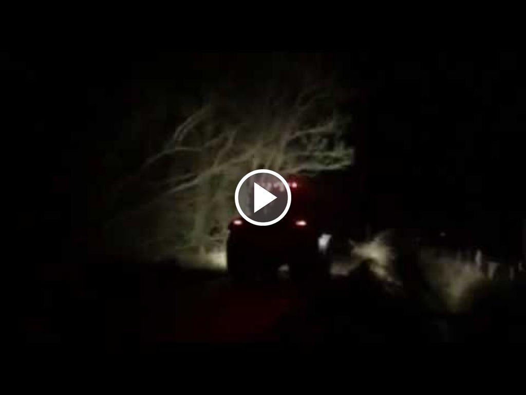 Wideo Case IH Puma 165 CVX