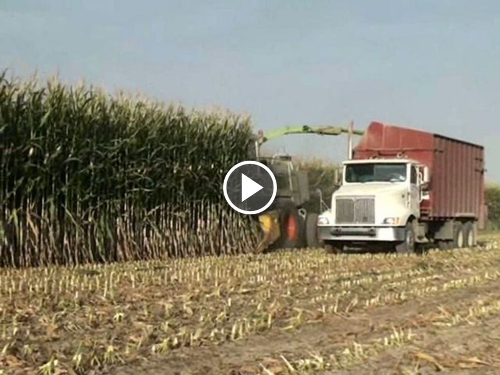 Video Claas Onbekend