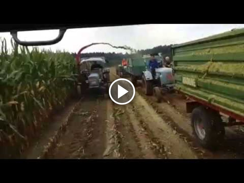 Video Eicher Diesel